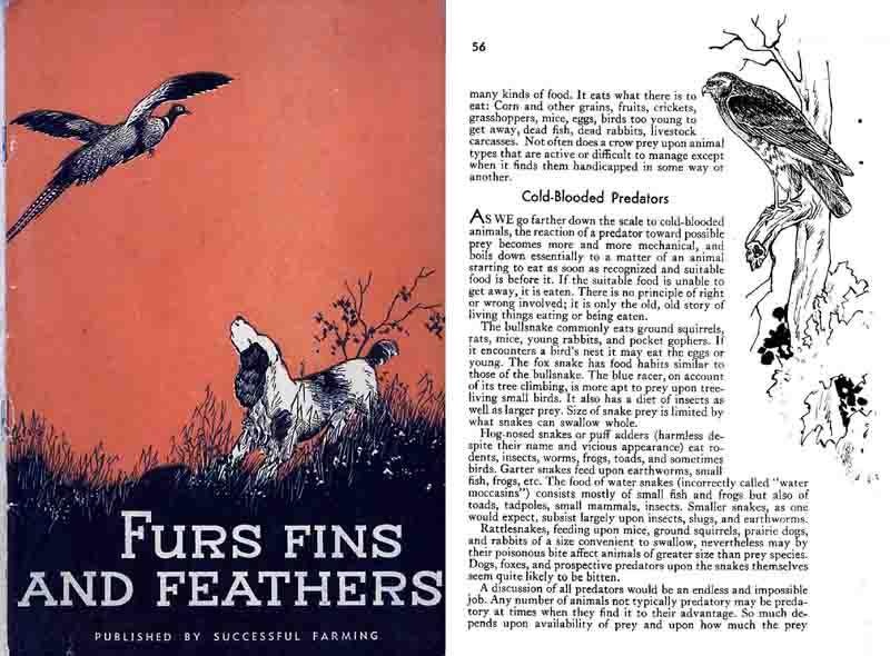 Furs, Fins and Feathers 1934