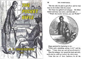 The Pocket Rifle and Other Stories 1881