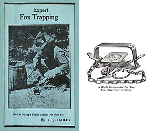Expert Fox Trapping c1939