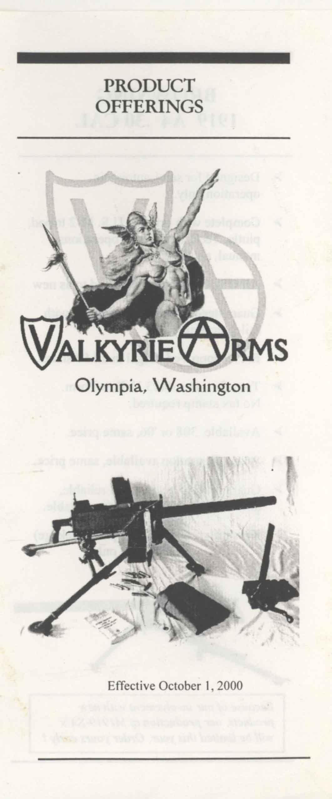 Valkyrie Arms 2000 Machine Gun Flyer